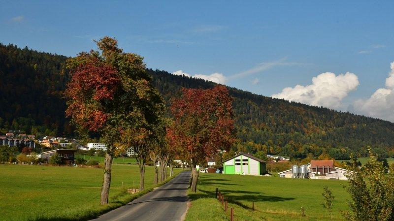 La plantation collective se tiendra le 4 novembre le long de la route Chézard-Fontaines.