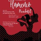 Soirée Flamenco par L'Association Ibaté
