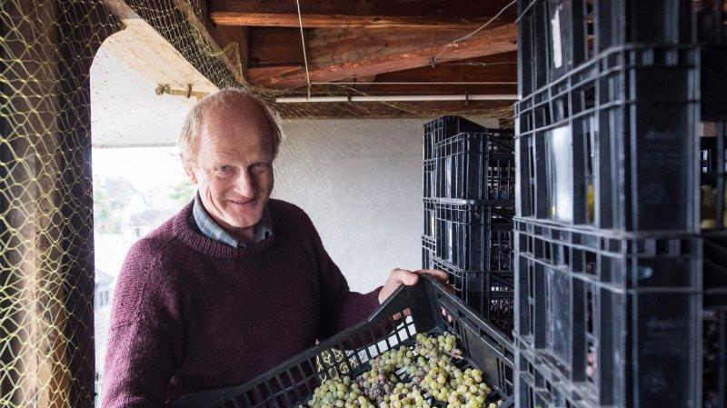 Le canton de Neuchâtel est champion des vins bio, et ce n'est pas un hasard