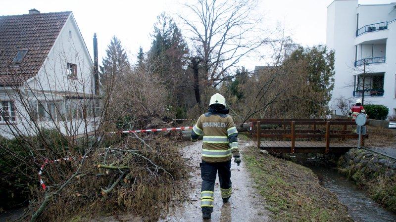 Les dégâts matériels liés au passage de la tempête Burglind/Eleanor début janvier coûteront 740 millions de francs au secteur immobilier dans les pays traversés, dont la Suisse.