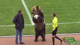 Russie: un ours donne le coup d'envoi d'un match
