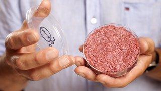 Alimentation: Bell investit dans la viande cultivée en laboratoire