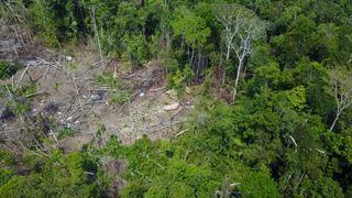 Amérique latine: un drone dévoile l'existence d'une tribu inconnue en Amazonie