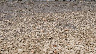 Le lac des Brenets est à sec