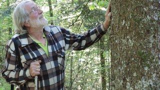 Pour sauver la forêt, il en filme la beauté