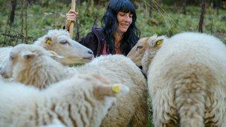 """Une Vaudruzienne oublie sa maladie grâce à ses """"moutons thérapeutiques"""""""