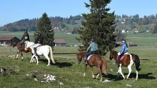 L'Equi Trail des Franches-Montagnes