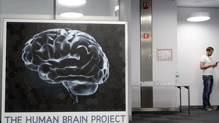 Sciences: l'EPFL devrait partager la coordination du Human Brain Project