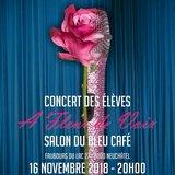 Concert au Salon du Bleu Café