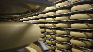 Un fromager affine l'Emmental en musique