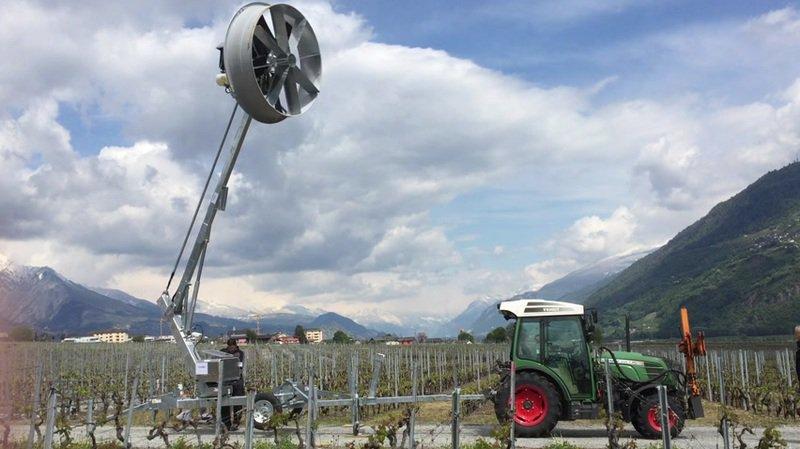Une mini-éolienne a été testée avec succès pour lutter contre le gel.
