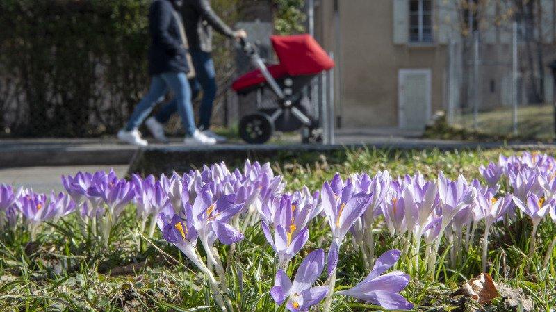 Météo: ce jeudi, les records de température pour un mois de février tombent un peu partout en Suisse romande