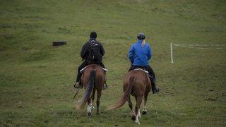 Jura: une balade à cheval offerte pour deux nuitées