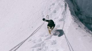 Himalaya: une chienne errante rejoint un groupe d'alpinistes et gravit un «7'000 mètres»
