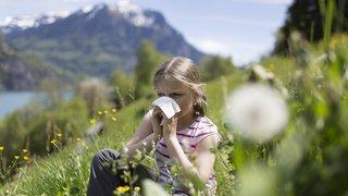 Allergies: le pollen favorise aussi les infections comme l'herpès, les boutons de fièvre, la varicelle ou les refroidissements