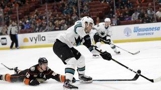 Hockey - NHL: 28e but de la saison pour Timo Meier qui devrait battre le record de Mark Streit