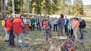 Voyage dans le monde des forestiers du Val-de-Ruz