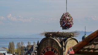 L'œuf de Mandril s'est posé au sommet de la tour de Diesse à Neuchâtel