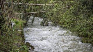Neuchâtel: eaux globalement propres, mais résidus de médicaments dans le Seyon