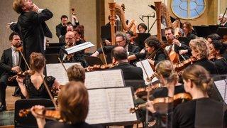 Un orchestre au zénith pour son 10e anniversaire