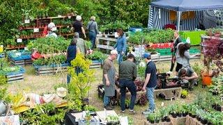 Un week-end positif pour les Journées des plantes à Vaumarcus