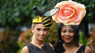 Course hippique: chapeaux en folie au Royal Ascot