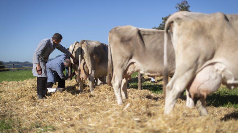 Changement climatique: les agriculteurs cherchent des solutions pour survivre et émettre moins de gaz à effet de serre