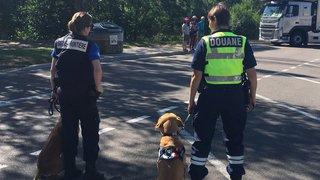 120 véhicules contrôlés par les douanes franco-suisses dans le Doubs et l'Ajoie