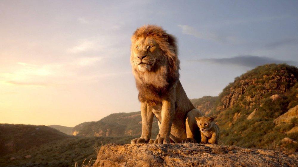 «Le Roi Lion» sous le règne du copié-collé