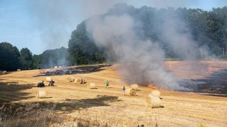 Un champ part en fumée à Rochefort