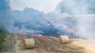 Un champ en feu à Rochefort