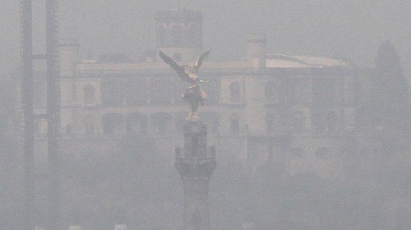 Mexique: le Biourban, l'arbre artificiel qui lutte contre la pollution de l'air
