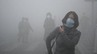 Pollution de l'air: des particules présentes dans le placenta