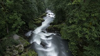 L'eau dans tous ses états au Festival photo nature à Saignelégier