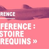 Conférence – Histoire des requins
